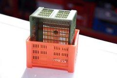 2013-wirtschaftsforum-salem-cargoplast_5561.jpg
