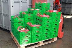 2013-wirtschaftsforum-salem-cargoplast_5563.jpg