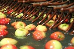 2014-wirtschaftsforum-salem-salemfrucht_2814.jpg
