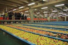 2014-wirtschaftsforum-salem-salemfrucht_2829.jpg
